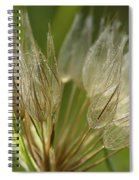 Translucent Spiral Notebook