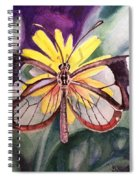 Transparent Butterfly Spiral Notebook