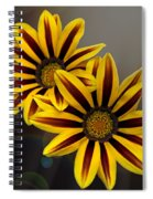 Treasure Flowers With Light Flares Spiral Notebook