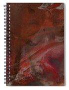 Treasures In Autumn Spiral Notebook