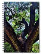 Tree 105 Spiral Notebook
