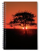Tree A Glow Spiral Notebook