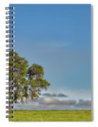 Tree Above The Clouds Spiral Notebook