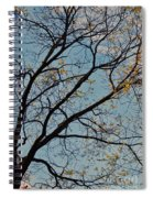 Tree Against The Sky Spiral Notebook