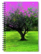 Tree And Color Spiral Notebook