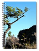 Tree And Rock Spiral Notebook