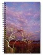 Tree And Sky At Cape May Point State Park  Nj Spiral Notebook