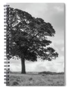 Tree And The Cage Tower In The Distance In Lyme Park Estate In B Spiral Notebook