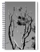 Tree Art Black And White 031015 Spiral Notebook