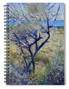 Tree At Aseeb Oman 2002 Spiral Notebook
