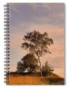 Tree At Dusk On Suomenlinna Island Spiral Notebook