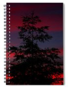 Tree At Sunset Spiral Notebook