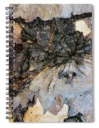 Tree Barks Pattern #13 Spiral Notebook