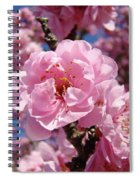 Tree Blossoming Pink Spring Blue Sky Baslee Troutman Spiral Notebook