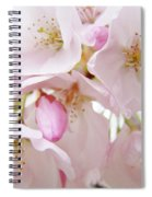 Tree Blossoms Art Prints Canvas Pink Spring Blossoms Baslee Troutman Spiral Notebook