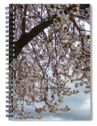 Tree Blossoms Landscape 11 Spring Blossoms Art Prints Giclee Sky Storm Clouds Spiral Notebook