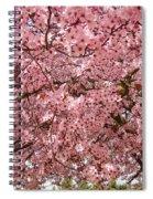 Tree Blossoms Pink Blossoms Art Prints Giclee Flower Landscape Artwork Spiral Notebook