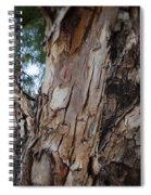 Tree Branch Texture 3 Spiral Notebook