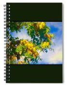 Tree Branch With Leaves In Blue Sky Spiral Notebook