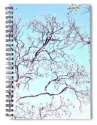 Tree Branches Reaching For Heaven 2 Spiral Notebook