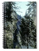 Tree Breath Spiral Notebook