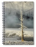 Tree By The Thermal - Yellowstone Spiral Notebook