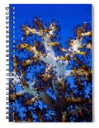 Tree Coral Spiral Notebook