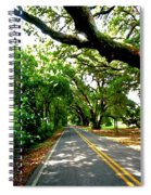 Tree Covered Road Spiral Notebook