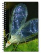 Tree Cricket Spiral Notebook