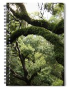 Tree Drama Spiral Notebook