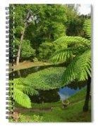 Tree Ferns Spiral Notebook
