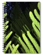 Tree Fingers Spiral Notebook
