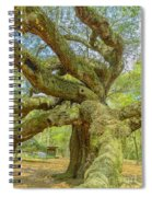 Tree For The Ages Spiral Notebook