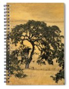 Tree Formation 2 Spiral Notebook