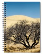 Tree Formation 3 Spiral Notebook