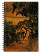 Tree Formation Spiral Notebook