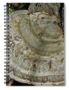 Tree Fungi Spiral Notebook