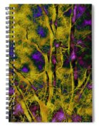 Tree Glow Spiral Notebook