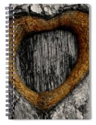 Tree Graffiti Heart Spiral Notebook