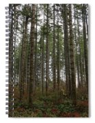 Tree Hugger's Paradise Spiral Notebook
