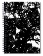 Tree In Black And White Spiral Notebook