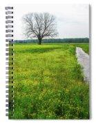 Tree In Field 2 Spiral Notebook