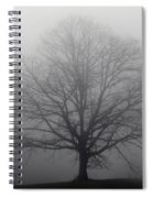 Tree In The Fog Spiral Notebook