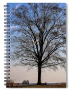 Tree In The Morning Light Spiral Notebook
