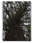 Tree In The Round Spiral Notebook