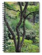 Tree Japanese Garden Spiral Notebook