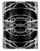 Tree Kaleidescope  Spiral Notebook