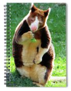 Tree Kangaroo Spiral Notebook