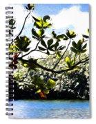 Tree Limb Over Water 2 Spiral Notebook