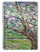 Tree, Loom Of Light And Life Spiral Notebook